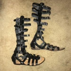8697d557e96 Madden Girl Shoes - Madden Girl By Steve Madden Tall Gladiator Sandals